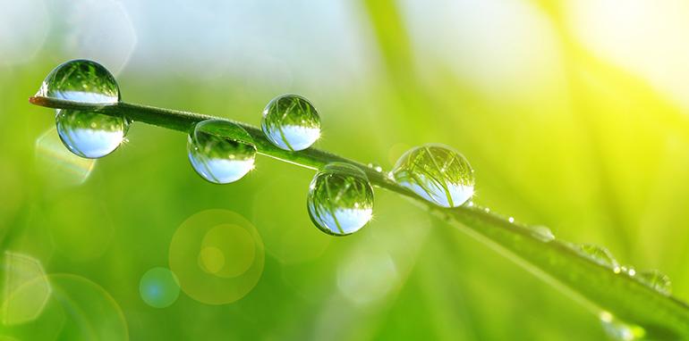 Adiquimica, Tratamiento de aguas