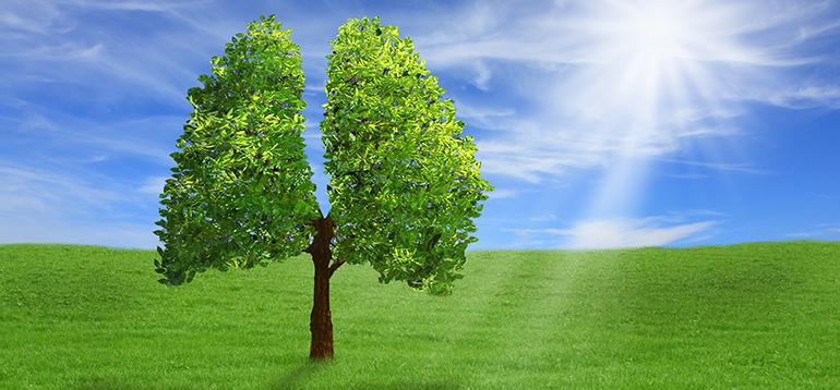 Energy&Waste, única empresa española finalista en los premios más importantes de la industria del biogás