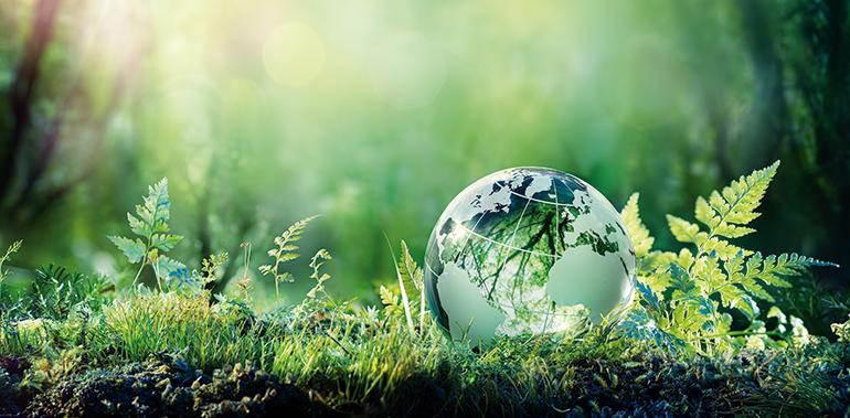 medioambiente, cambio climático
