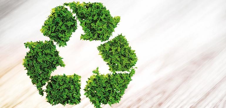 Estudio de la influencia de la limpieza del biogás en las prestaciones del sistema de cogeneración