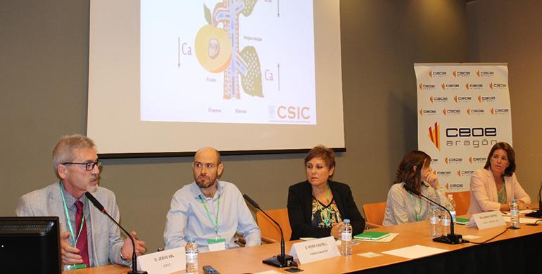 Instituto de Síntesis Química y Catálisis Homogénea (ISQCH), Consejo Superior de Investigaciones Científicas, CSIC, Universidad de Zaragoza, Aragón, CEOE Aragón, QuimiAragón 2018