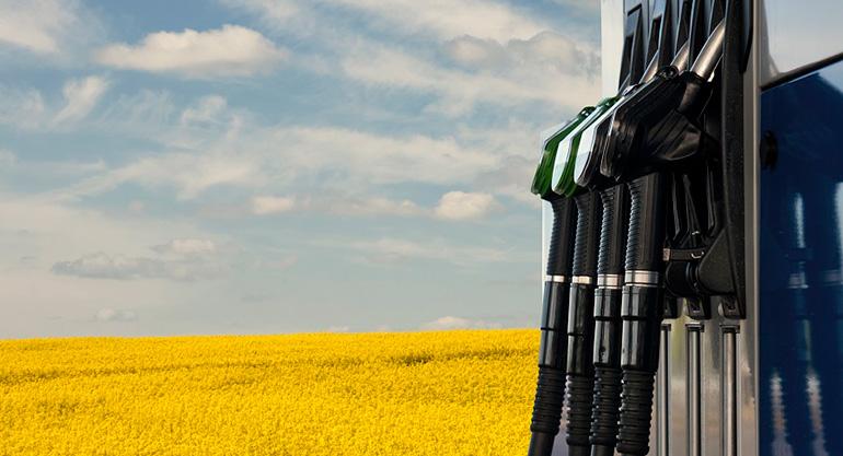 Regulado el Sistema Nacional de Verificación de la Sostenibilidad de biocarburantes y biolíquidos