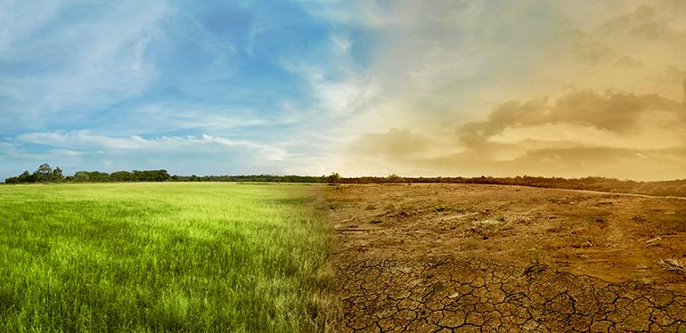 medioambiente, cambio climático, temperatura, planeta