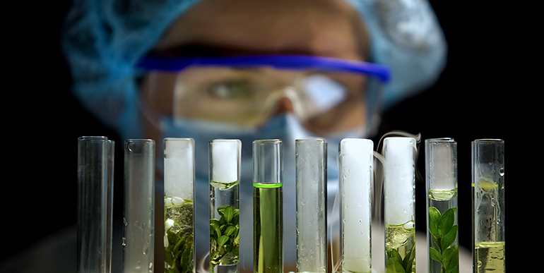Producción de biometano a partir de CO2 mediante tecnologías bioelectroquímicas