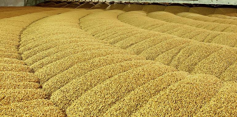 Riesgos de explosión en el transporte de graneles en la industria alimentaria